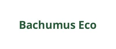 Bachumus