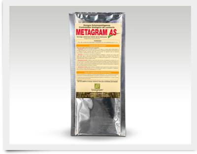 Metragram-AS_400x313