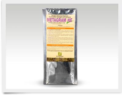 Metragram-HE_400x313