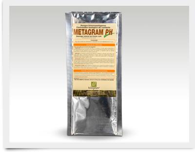 Metragram-PH_400x313