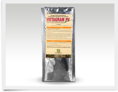 Metragram-PV_400x313