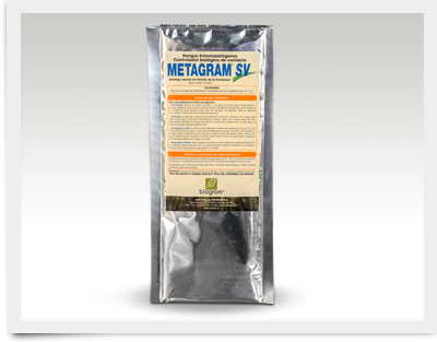 Metragram-SV_400x313